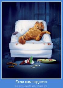 быть хозяином у себя дома, заведите кота.