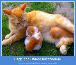 Ничего не знаю, всё уже было заказано - получите!)))