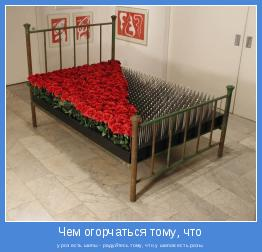 у роз есть шипы - радуйтесь тому, что у шипов есть розы.