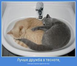 чем просторное одиночесто))