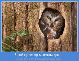 не важно уметь летать,но уметь видеть,слышать и внимать.