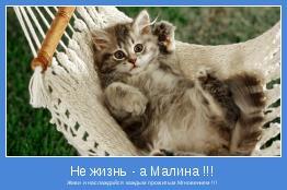Живи и наслаждайся каждым прожитым Мгновением !!!