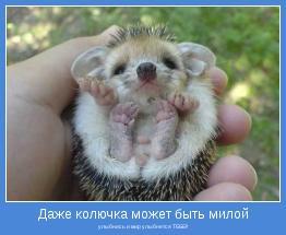 улыбнись и мир улыбнется ТЕБЕ!!