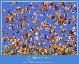 утренней бабочкой взмыв, день окрыляет...