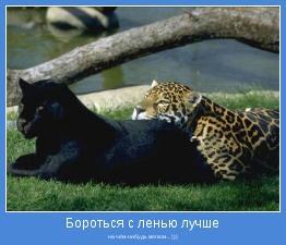 на чём-нибудь мягком ... )))