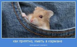 неожиданный сюрприз))