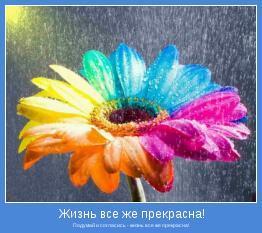 Подумай и согласись - жизнь все же прекрасна!
