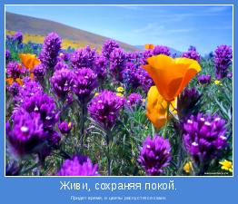 Придет время, и цветы распустятся сами.