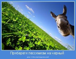 день! © Веслав Брудзиньский