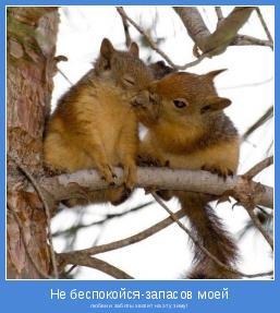 любви и заботы хватит на эту зиму!