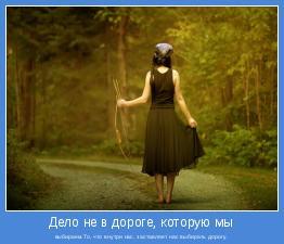 выбираем.То, что внутри нас, заставляет нас выбирать дорогу.