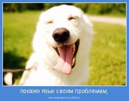 они испугаются и убегут)
