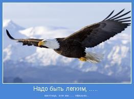 как птица,  а не как ...... пёрышко...