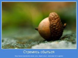 Неустанно проявляя свою суть через опыт, семя растет в древо