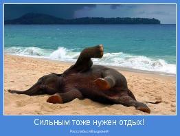 Расслабься!Выдохни!!!