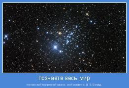 познав свой внутренний космос, свой организм. @ В. Боград.