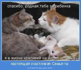 -в которой все друг друга любят