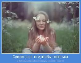 за бабочками;ухаживай за своим садом и они сами  прилетят