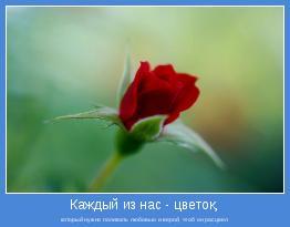 который нужно поливать любовью и верой, чтоб он расцвел