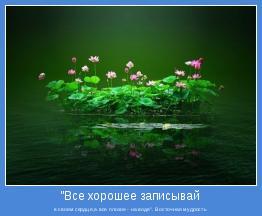 """в своем сердце,а все плохое - на воде"""". Восточная мудрость"""