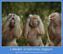 ОЙ,ЧЁ ВЧЕРА БЫЛО?Год обезьяны наступил что-ли