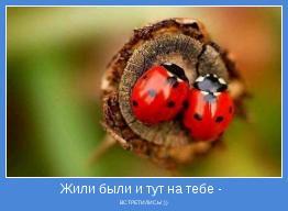 ВСТРЕТИЛИСЬ! :))