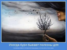 человека:немного потреплют вашу душу, но и вынесут всю грязь