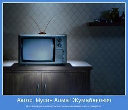 В телевизоре и компьюторе слишком много насилия и разврата.