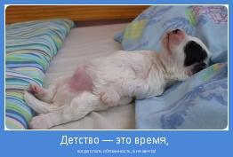 когда спать обязанность, а не мечта!