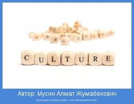 Культура и субкультура — это обезьянничество.