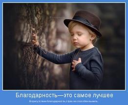 В присутствии благодарности, страх не способен выжить.