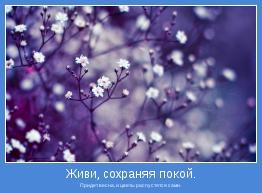 Придет весна, и цветы распустятся сами.