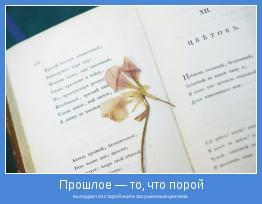 выпадает из старой книги засушенным цветком.