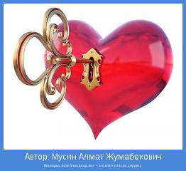 Бескорыстное благородство — это ключ от всех сердец.