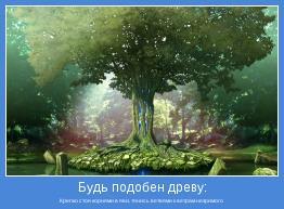 Крепко стоя корнями в яви, тянись ветвями к ветрам незримого
