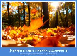 ваши принципы; меняйте листья, сохраняйте корни.