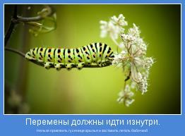 Нельзя приклеить гусенице крылья и заставить летать бабочкой