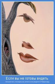 больше того, что видно, вы ничего и не увидите © Р. Бернхард