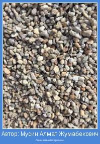 Лишь камни безгрешны.