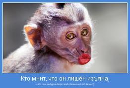 — Схож с гейдельбергской обезьяной. (С. Брант)