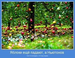 что-то не видно... © Стругацкие