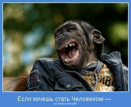 не обезьянничай!!!