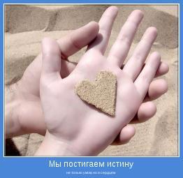 не только умом, но и сердцем