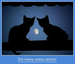 Это так приятно! Когда любят до луны, а потом обратно!