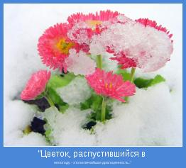 """непогоду - это величайшая драгоценность.."""""""