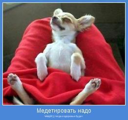 ЧАЩЕ!! )) тогда и здоровье будет