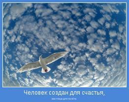 как птица для полёта.